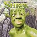 Shrek Live Action
