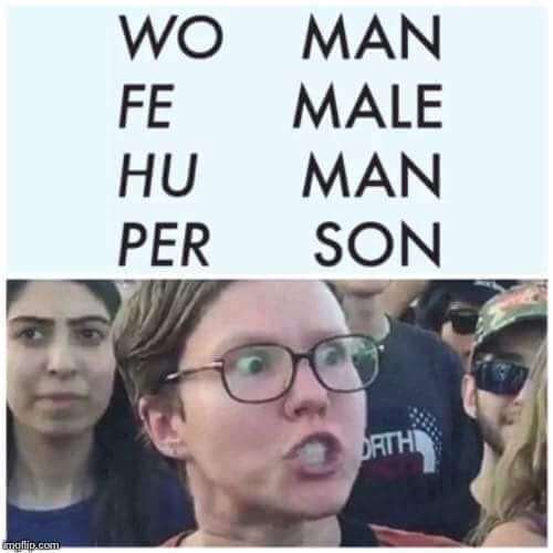 feminazi - meme