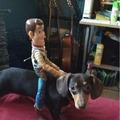 woody montado em seu cachorro salsicha kkkkkkkkkkkkk