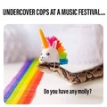 Undercover cops at music festival