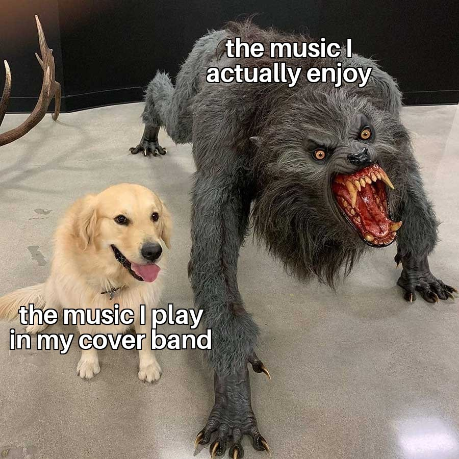 Gotta play for the crowd - meme