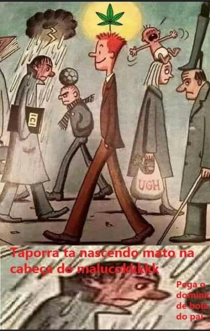 Dom Pedro II melhor Brasileiro que já existiu. Quem concorda? - meme
