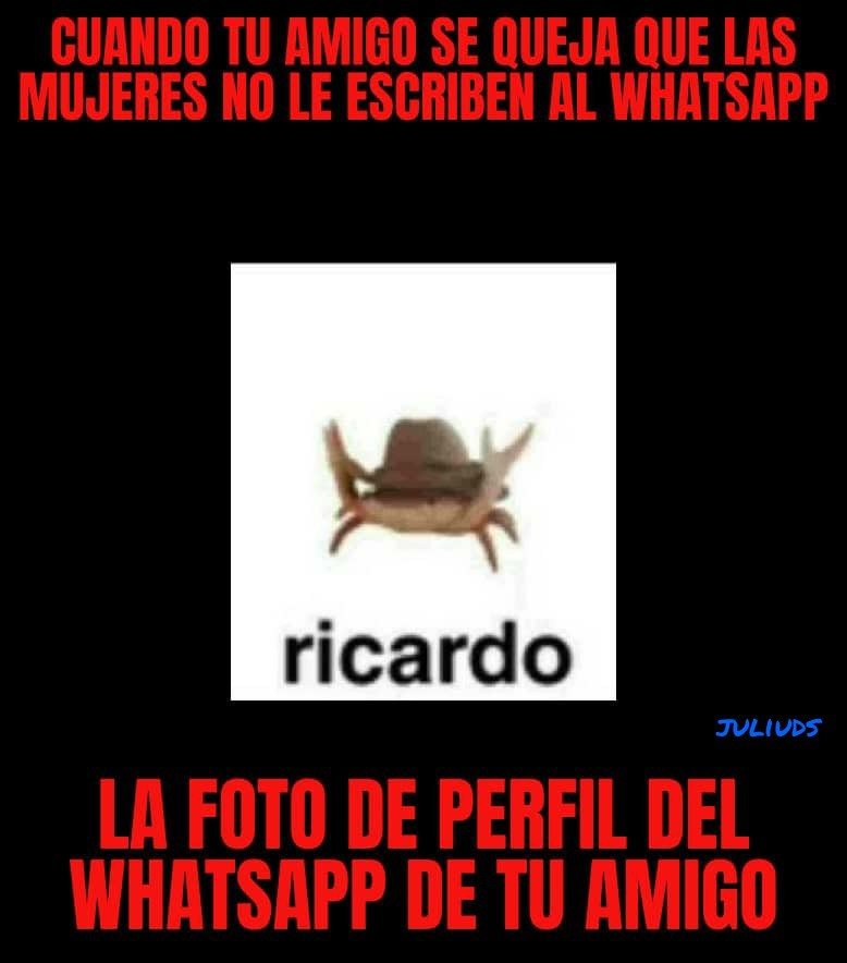 Ricardo momento - meme