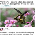stop killing bees
