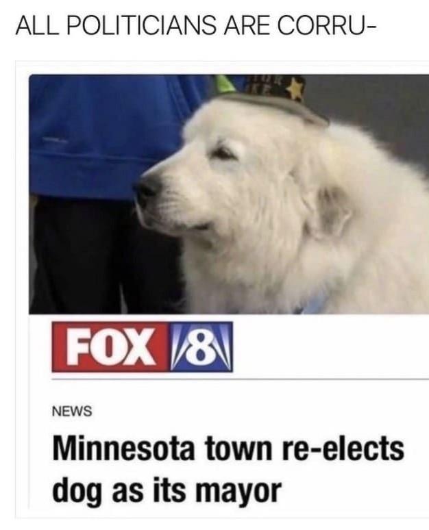 Doggo for pres 2020 - meme