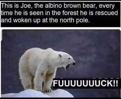 Who's Joe ? - meme
