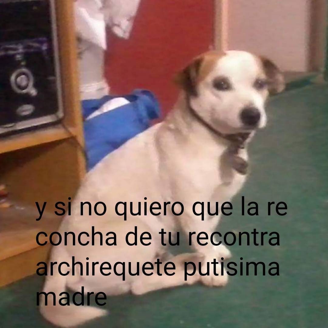 ese perro se llama perry, es mio aunque murio :crying: - meme