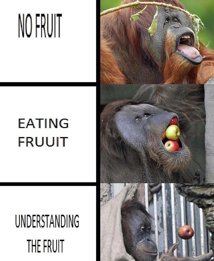 fruit - meme