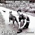 Dentier en or