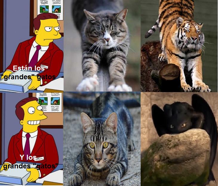 chimuelo acechando, me recuerda a un gato - meme