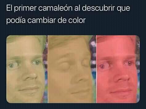 COSAS CAMALEÓNICAS - meme
