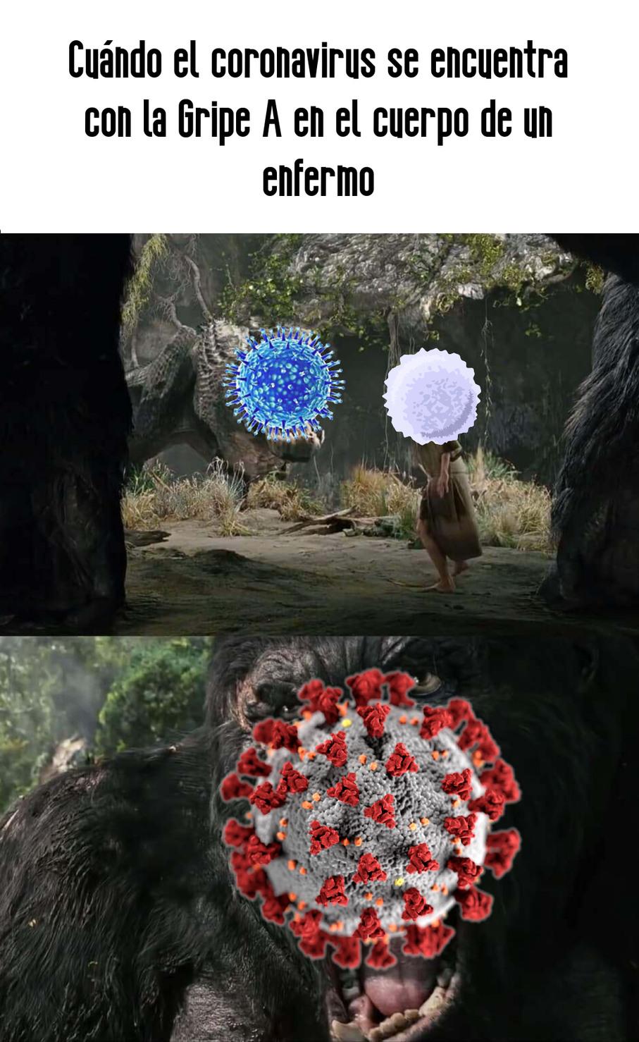 Todos tienen un meme del coronavirus, solo quería tener uno yo :(