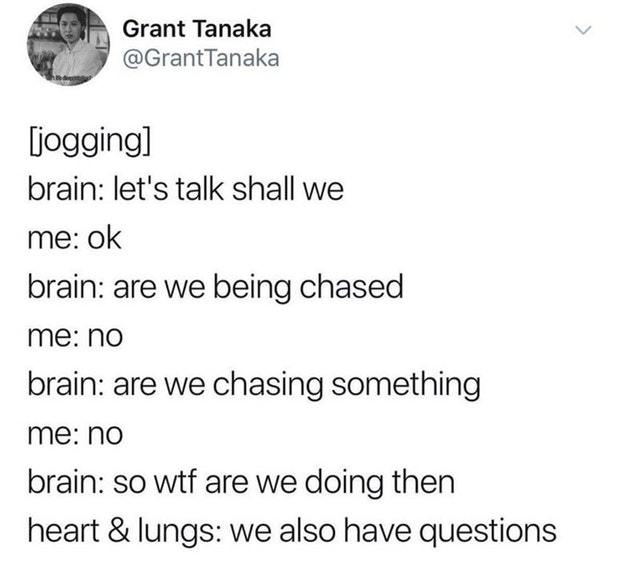 Are we being chased? - meme
