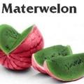 matterwelon