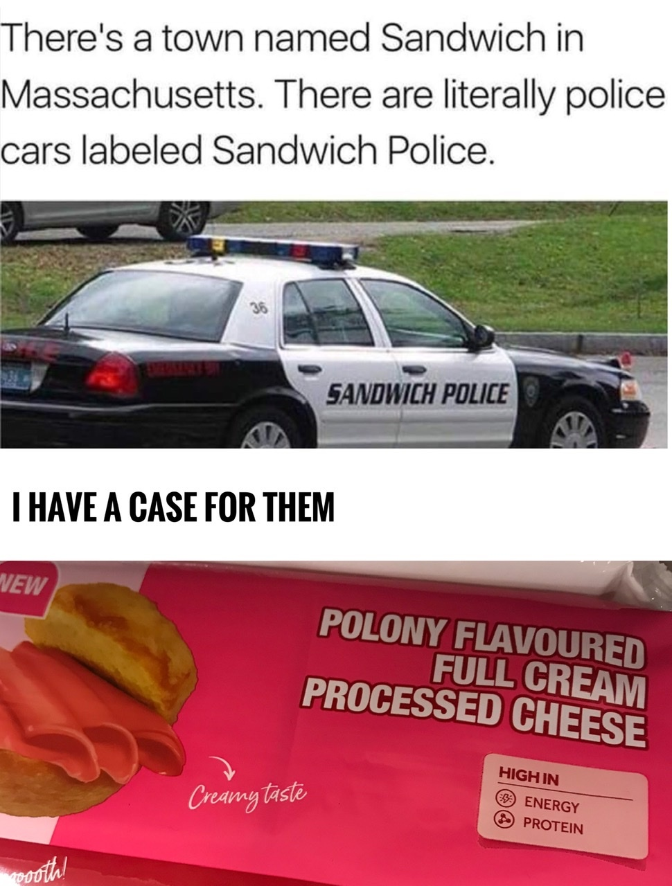 Processed cheese is wrong. Processed meat flavoured processed cheese is wronger - meme
