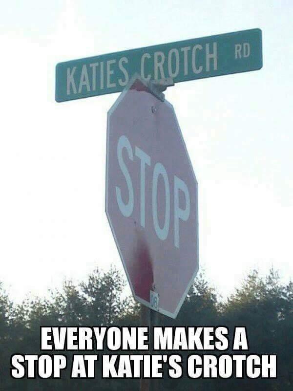 Katie's Crotch - meme
