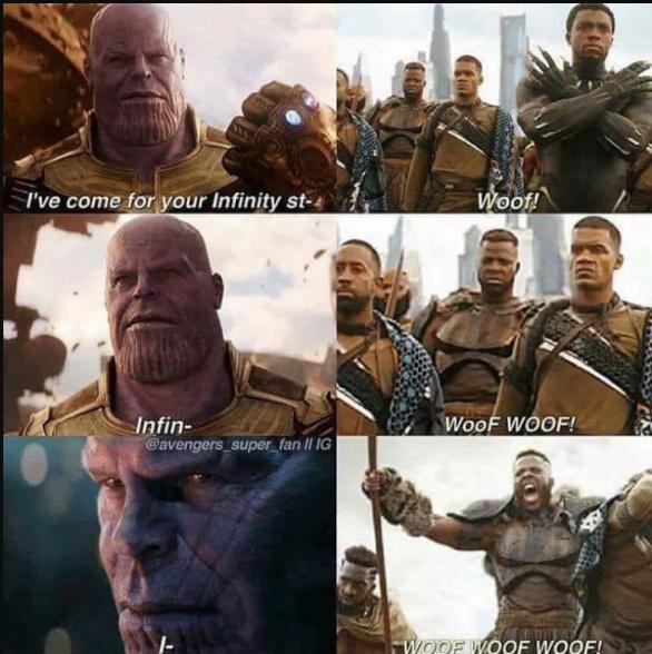 the dog - meme