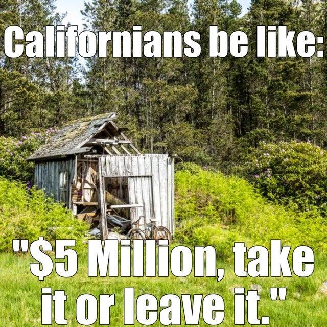Real state in California - meme