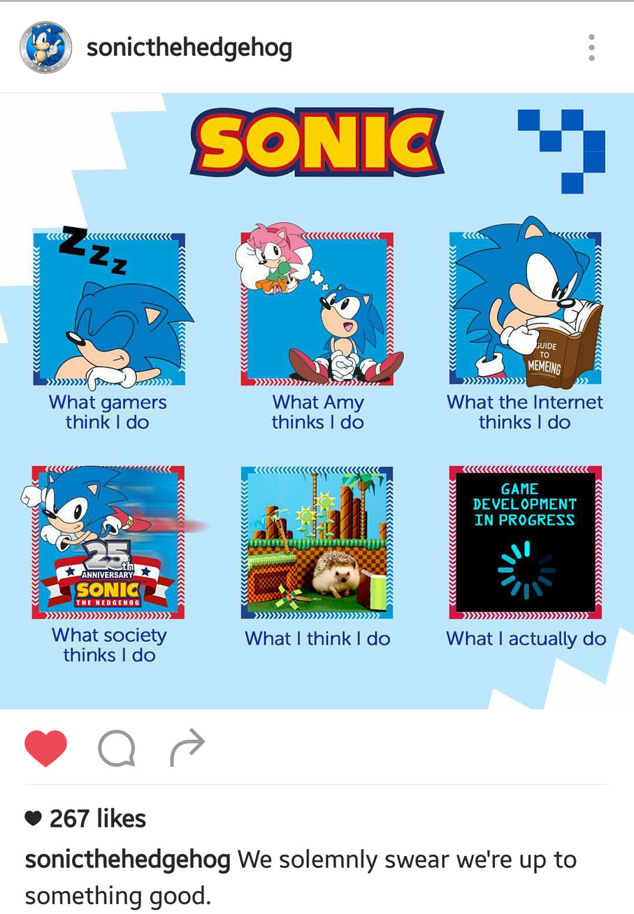 Sonic is self aware that he is a meme