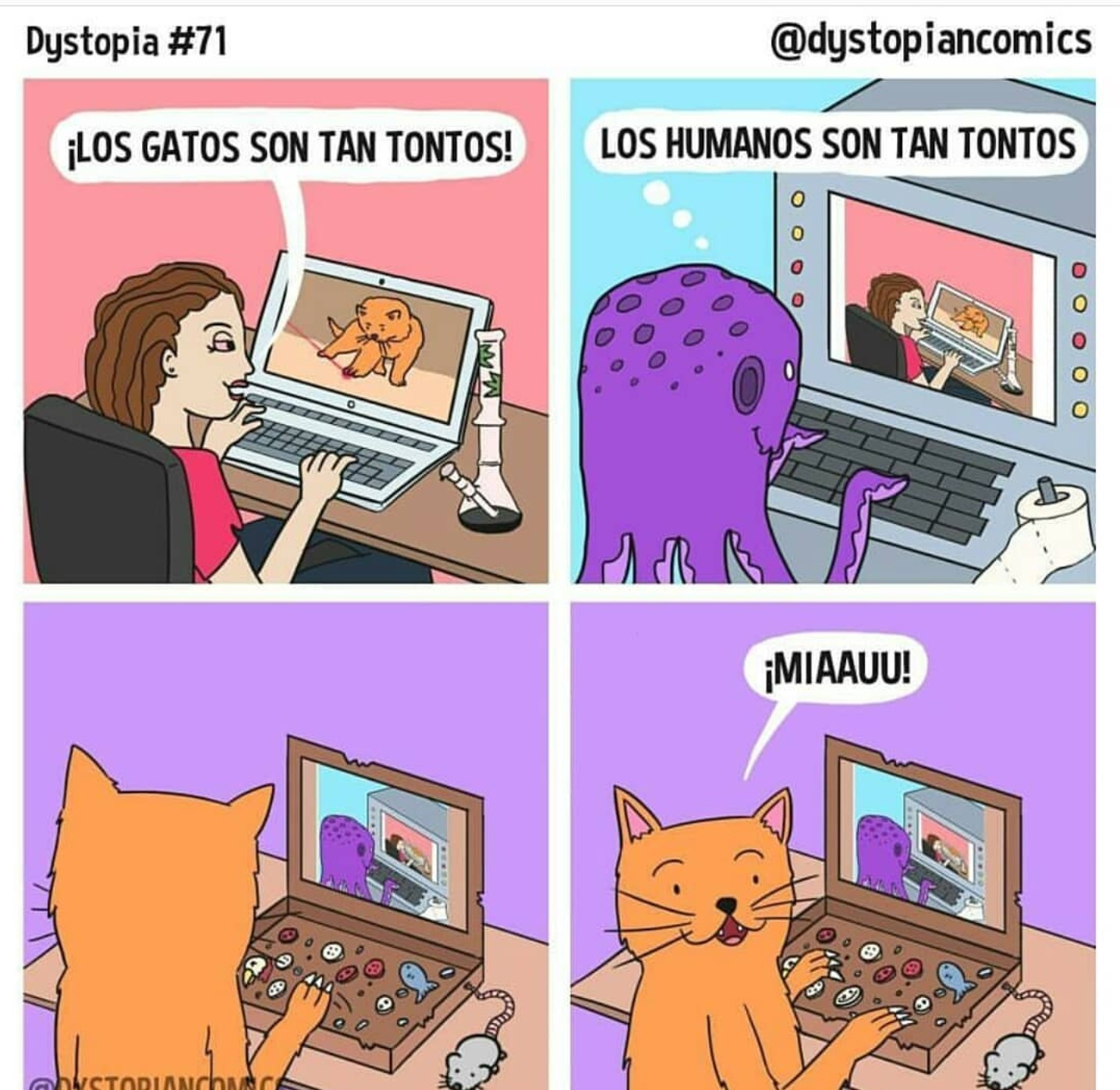 Miaau - meme