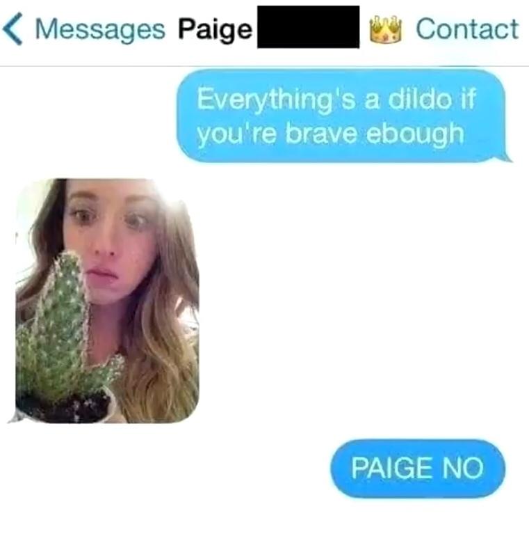 PAIGE NO - meme