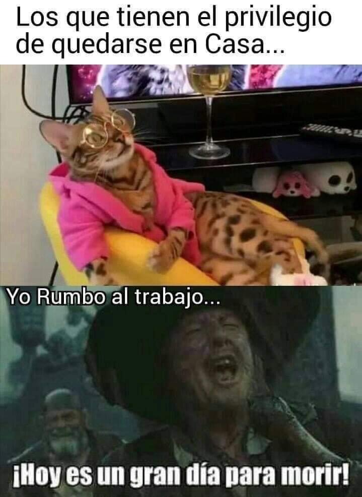 adios vaquero - meme