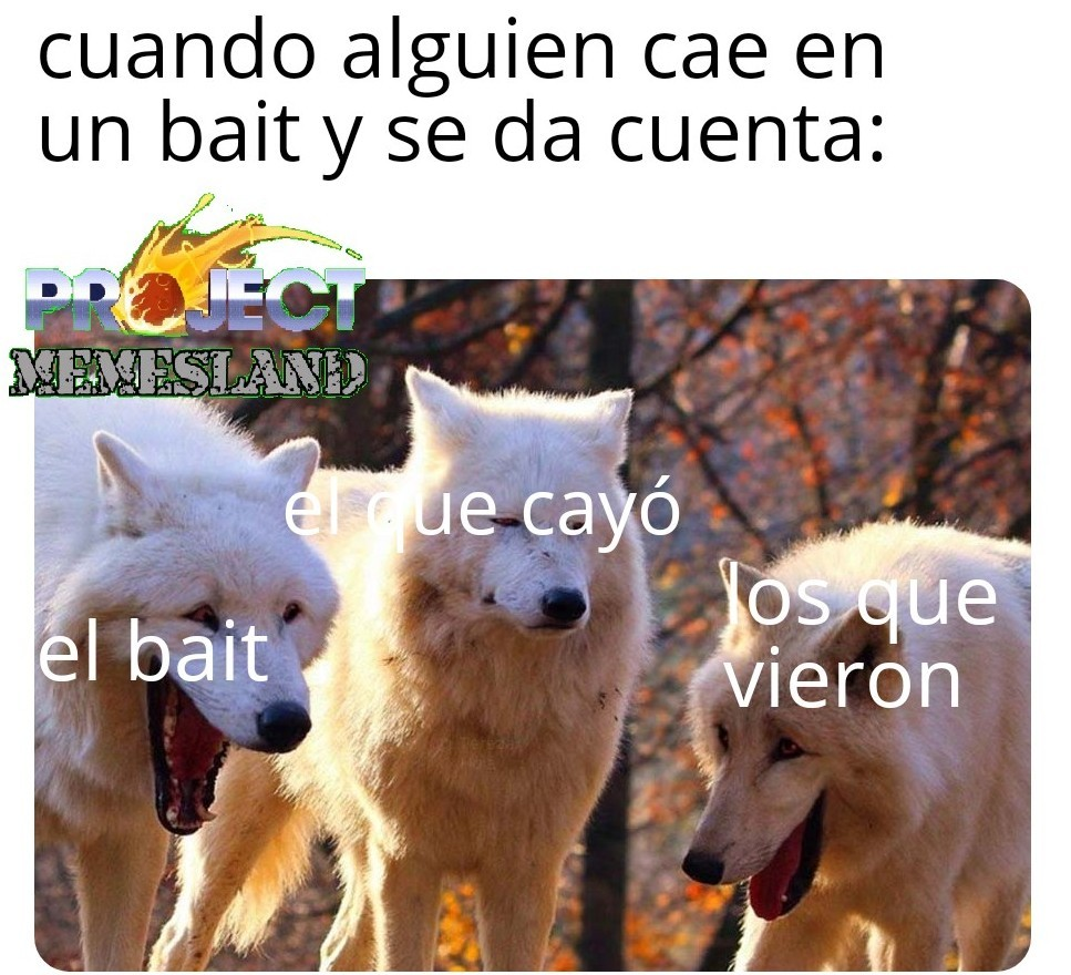 tonto - meme