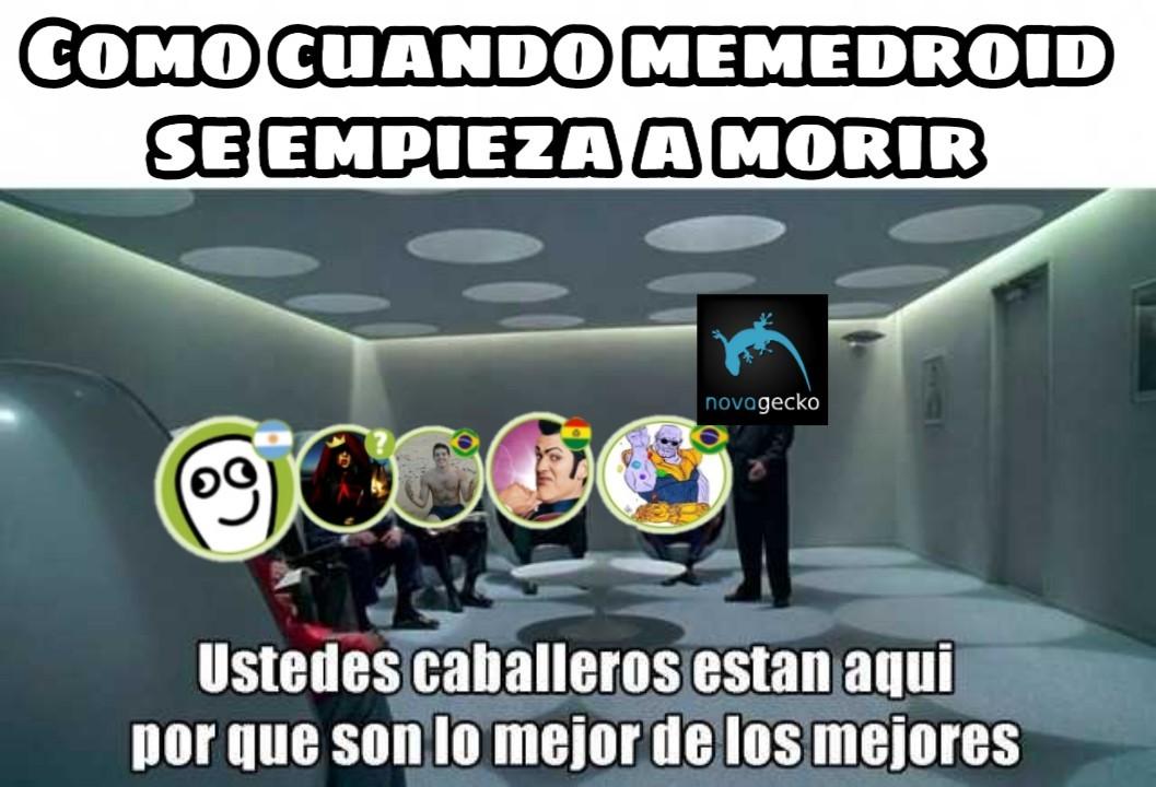 Martes - meme