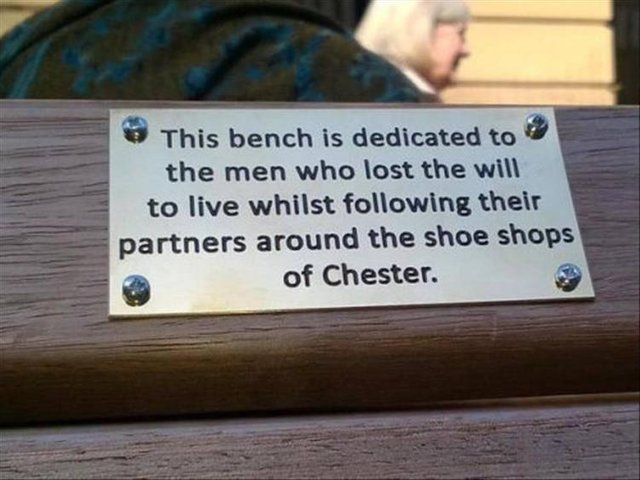 This bench is dedicated to the men who lost the will to live - meme