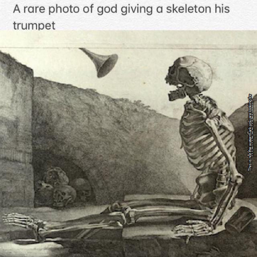 And god said unto the skeleton: Thou shalt doot Thealmightyducklord: 1:3 - meme
