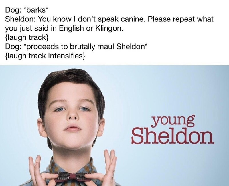 Young Sheldon - meme