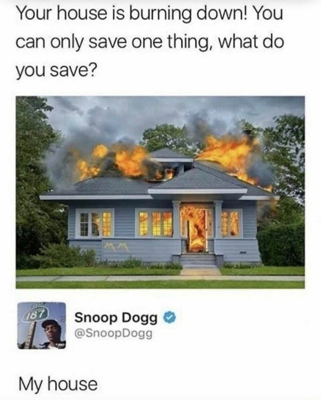 Your house is burning down! You can only save one thing, what do you save? - meme