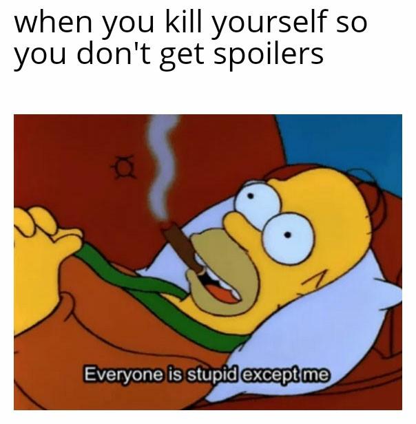 Stop spoilers - meme