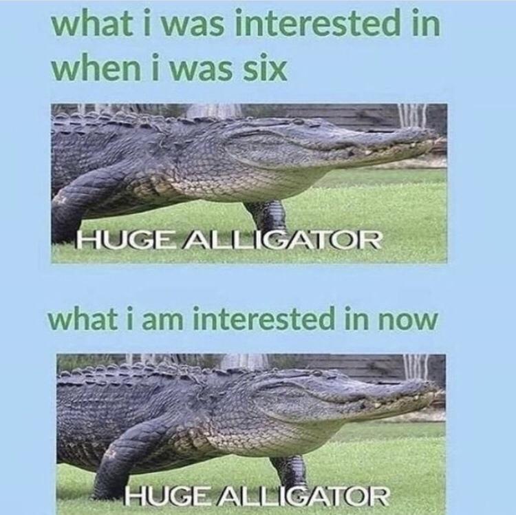 H U G E - meme