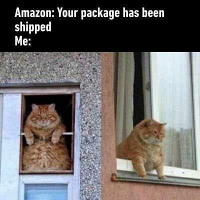 Where's package? - meme