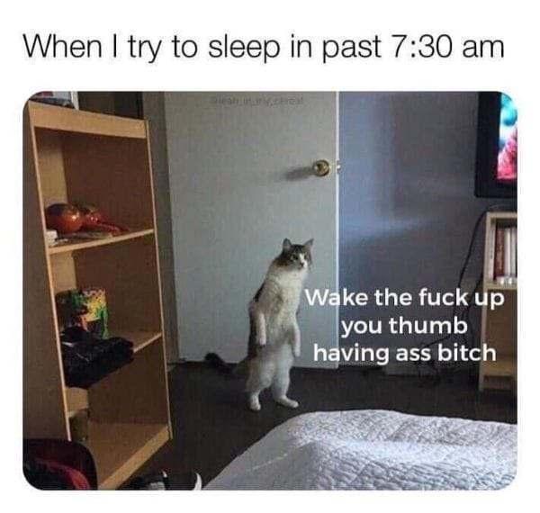 Thumb - meme