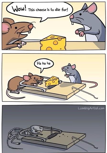 Dead rat - meme
