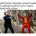 Trump=dumb