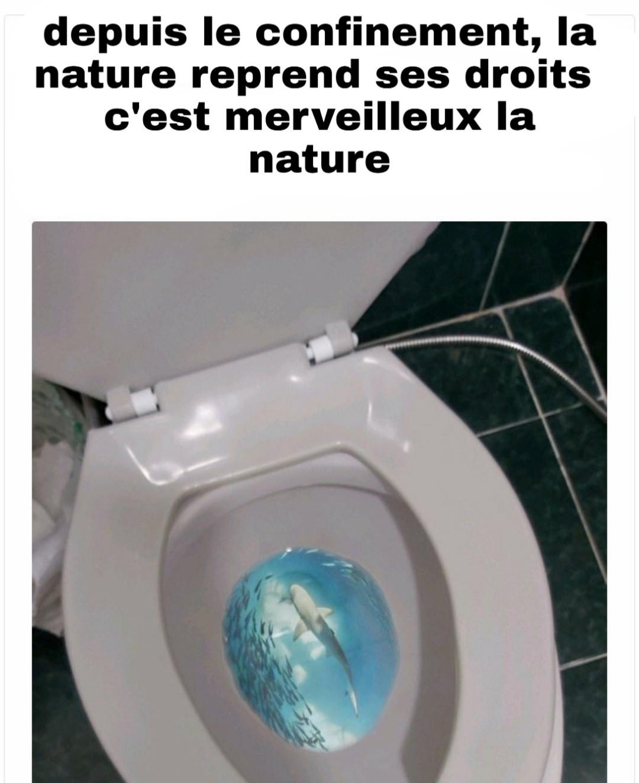 La nature reviens - meme