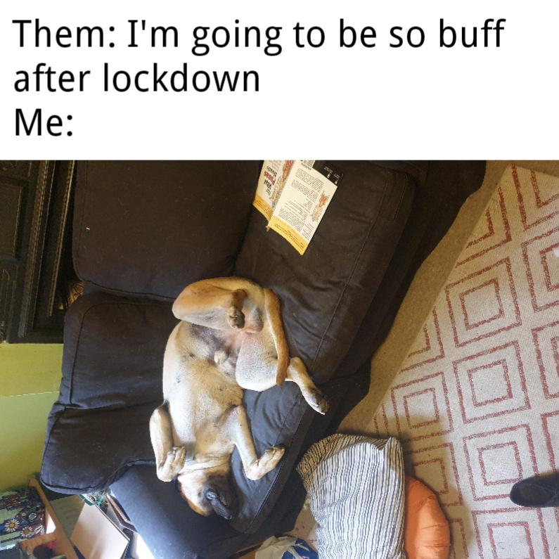 I just want to sleep - meme