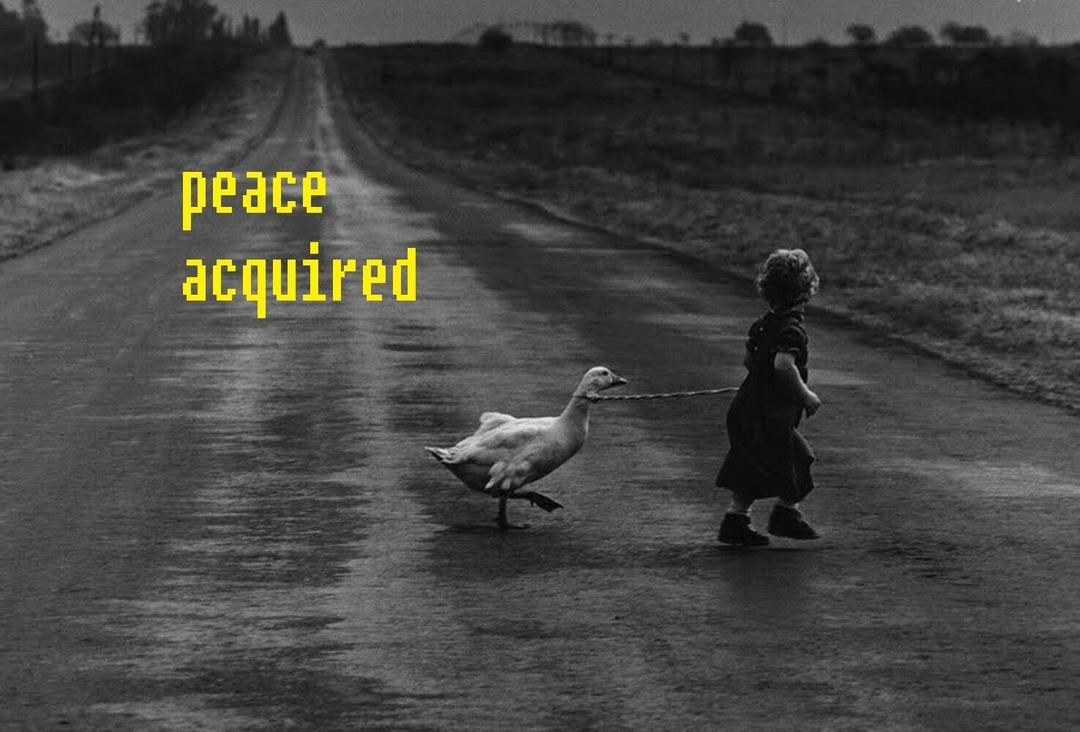 peace acquired - meme