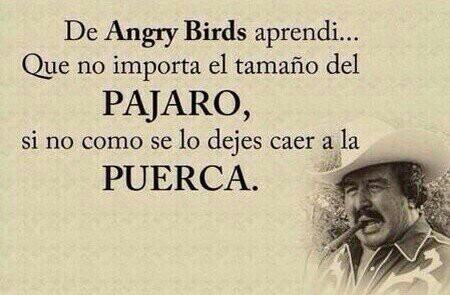 Sabiduría de un sabio que sabe :) - meme