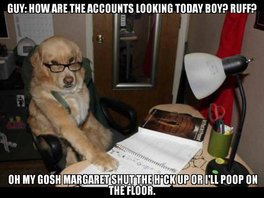Doggo Financial - meme