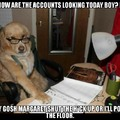 Doggo Financial