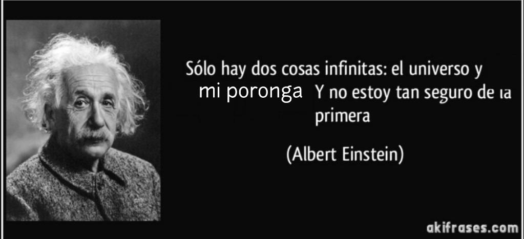 Albert Einstein - meme