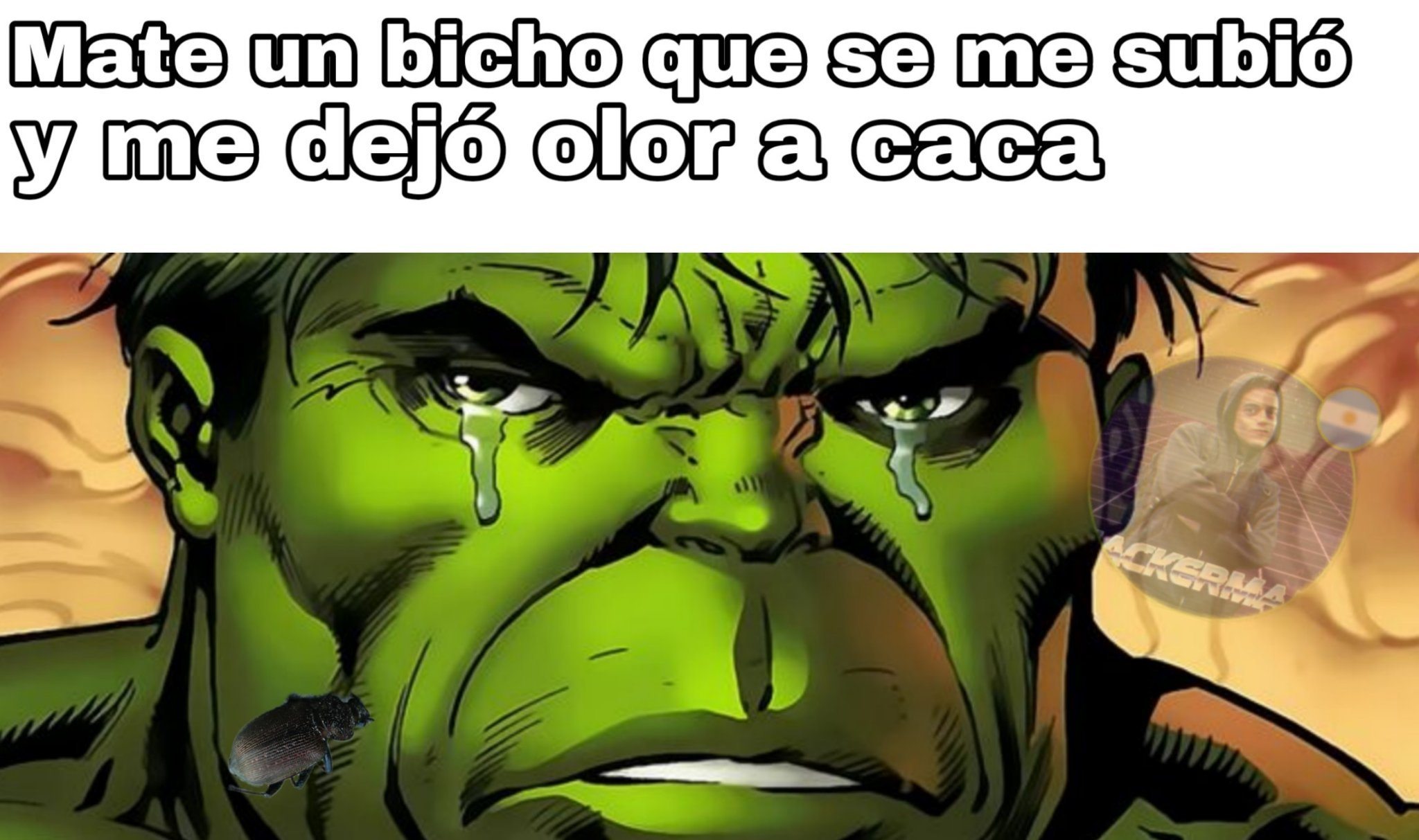 Noooo!! :( - meme