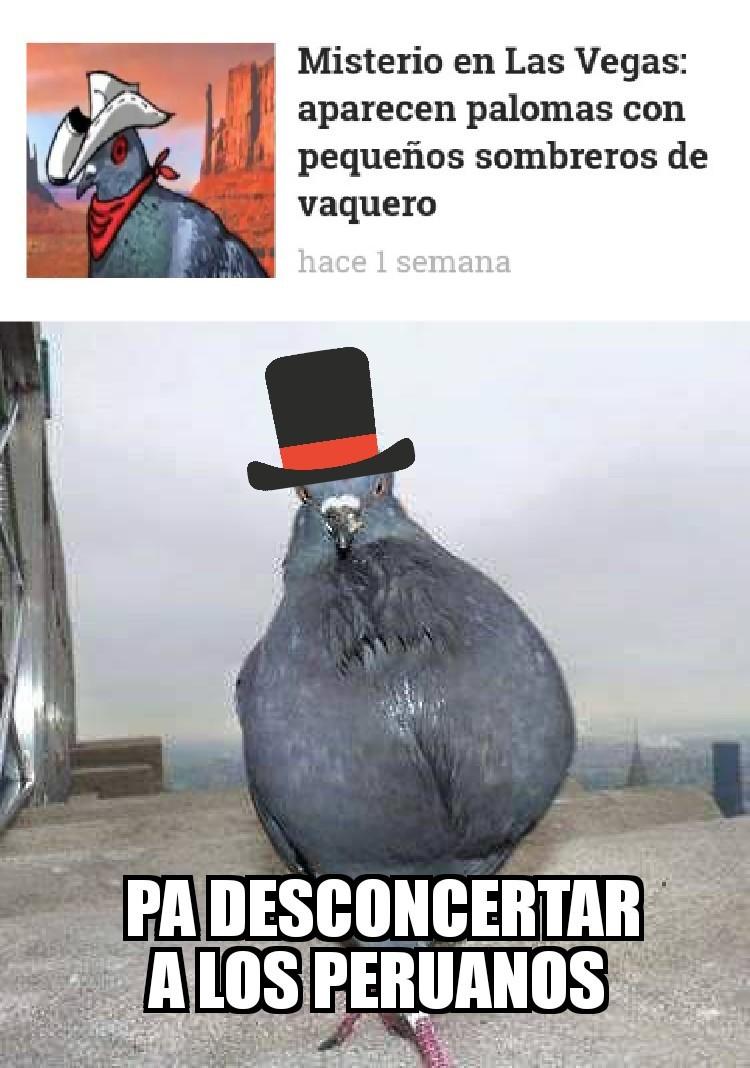 Dicen que los peruanos comen palomas - meme