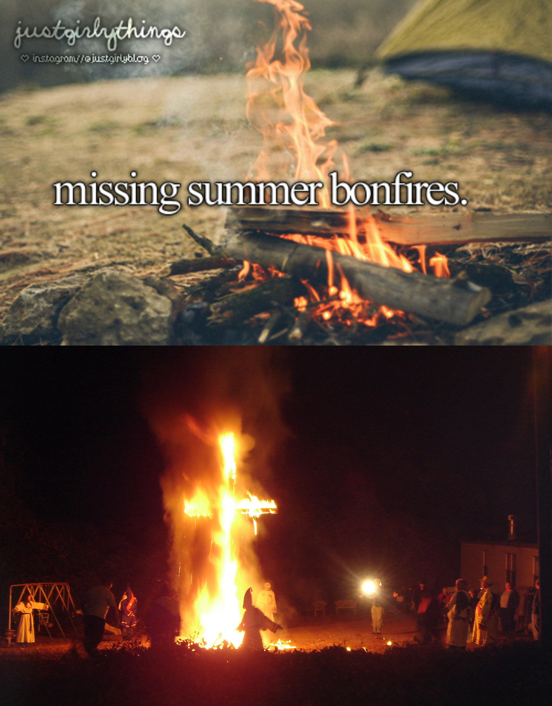 dongs in a bonfire - meme