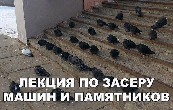 ЛЕКЦИЯ... - meme