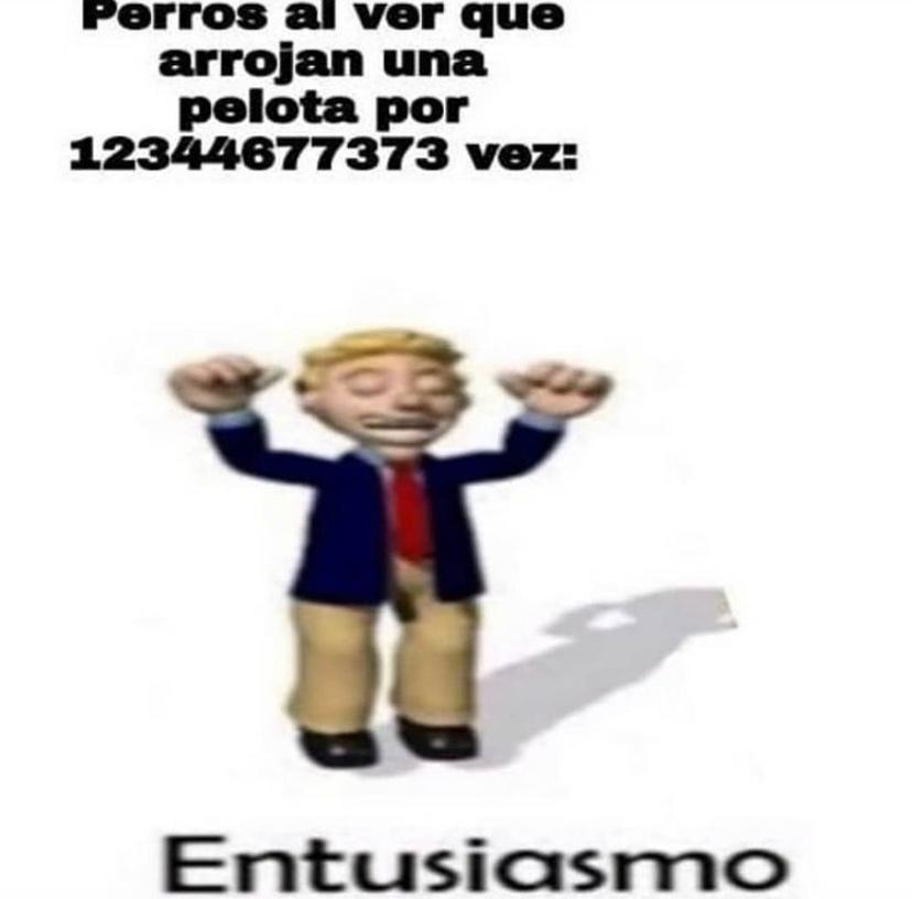 el bicho - meme